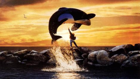 "Promotional Photo for the 1993 film ""Free Willy"""